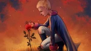 Las Rosas no tienen corazón