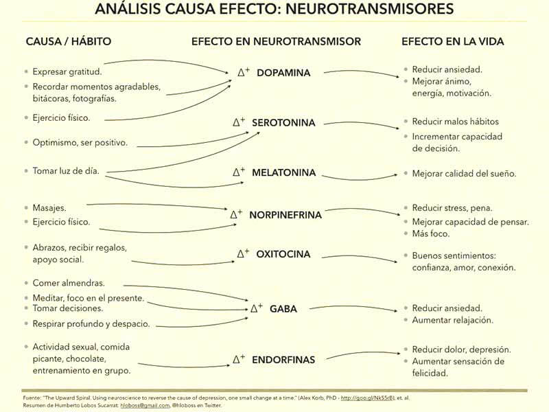 analisis-causa-efecto-neurotransmisores