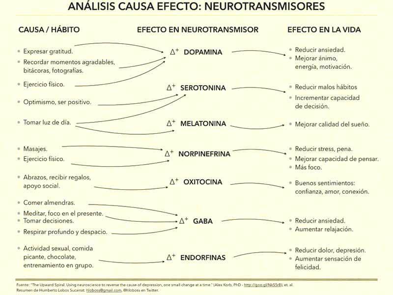 analisis-causa-efecto-neurotransmisores