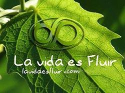 La Vida es Fluir