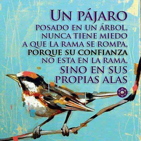 Un pájaro posado en un árbol nunca tiene miedo de que la rama se rompa, porque su confianza no está en la rama sino en sus propias alas