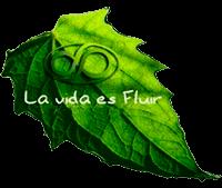 Sergio Melich de La Vida es Fluir